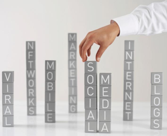 Welche Social Media Kanäle sind für Unternehmen aus Werder, Potsdam, Berlin und Brandenburg wichtig?